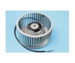 novy-filter-7900055